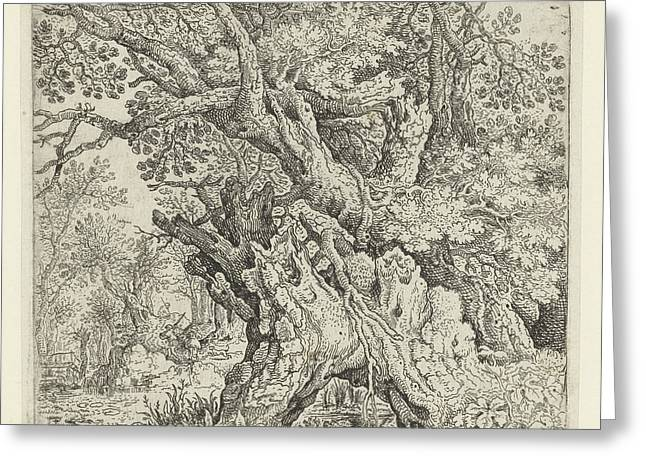 Gnarled Trees Near The Water, Roelant Savery Greeting Card by Quint Lox