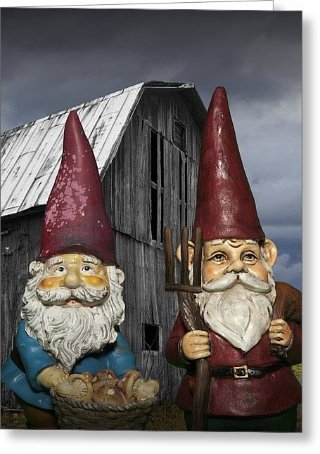 Gnome Gothic Greeting Card by Randall Nyhof