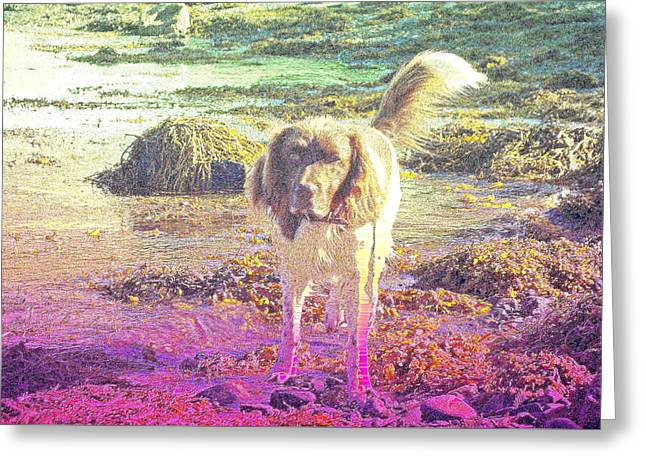 One Day Wil Will Go Hunting For Something Valuable  Greeting Card by Hilde Widerberg
