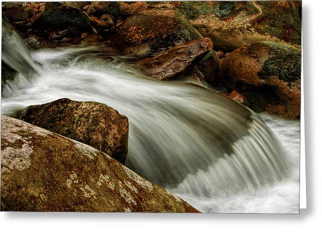 Go With The Flow Greeting Card by Dave Bosse