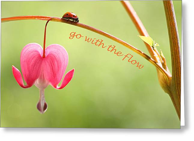Go With The Flow Greeting Card by Peggy Collins