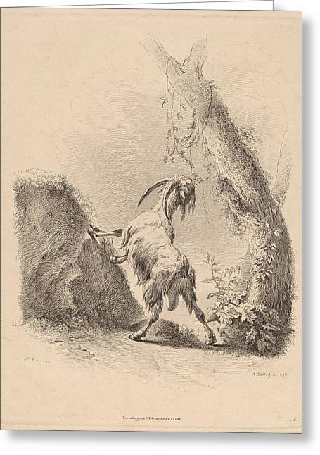 Goat In A Landscape Greeting Card by Celestial Images