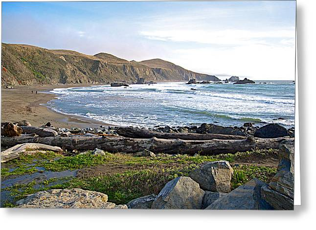 Goat Rock State Beach On The Pacific Ocean Near Outlet Of Russian River-ca  Greeting Card