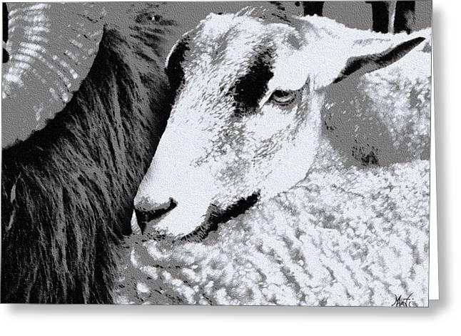 Goat Snuggled In With Family Greeting Card