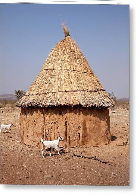 Goats And Hut In Himba Village, Opuwo Greeting Card
