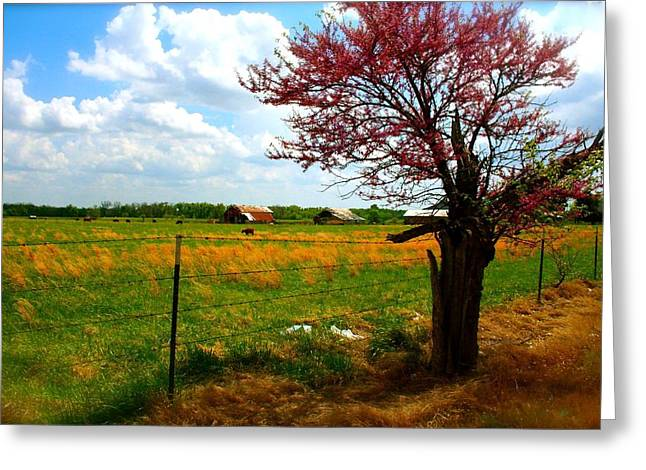 Gods Country   Commerce Miami Oklahoma Greeting Card