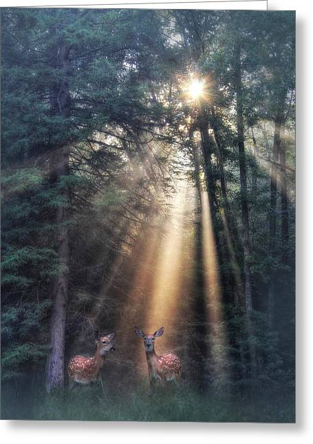 God's Creatures Greeting Card by Lori Deiter