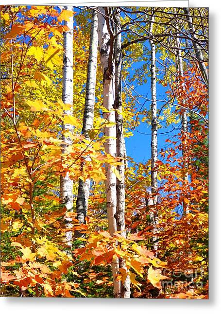 Gold Autumn Greeting Card