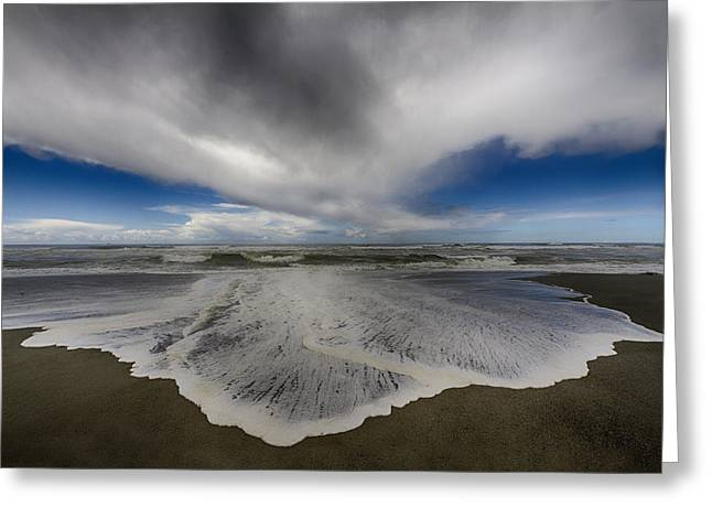Gold Bluffs Beach 1 Greeting Card