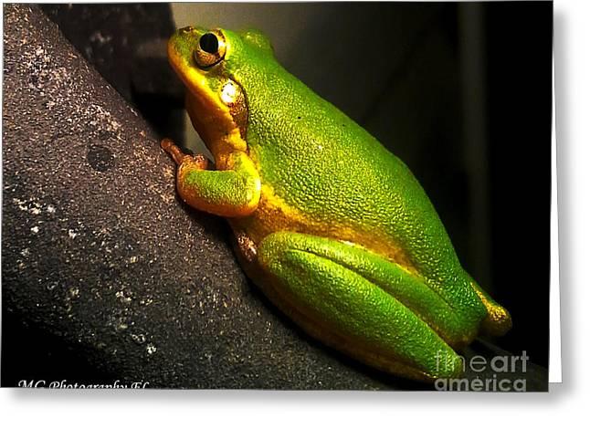 Gold Flake Frog Greeting Card