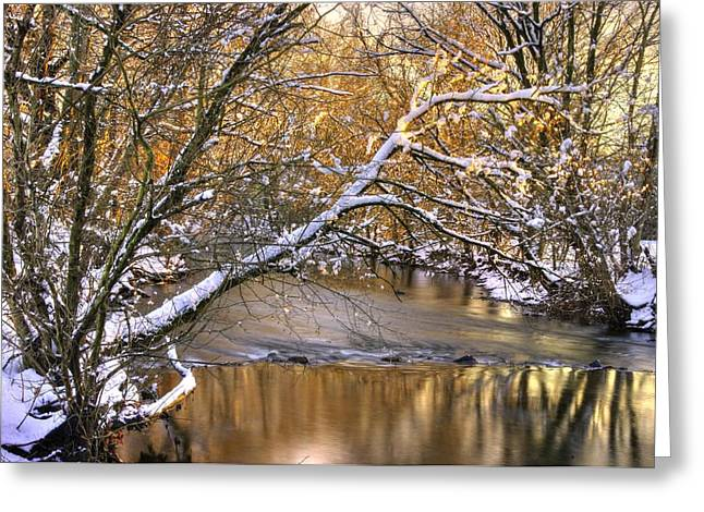 Gold In The Creek B1 - Owens Creek Near Loys Station Covered Bridge - Winter Frederick County Md Greeting Card by Michael Mazaika