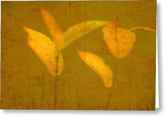 Gold Leaves Greeting Card by Suzanne Powers