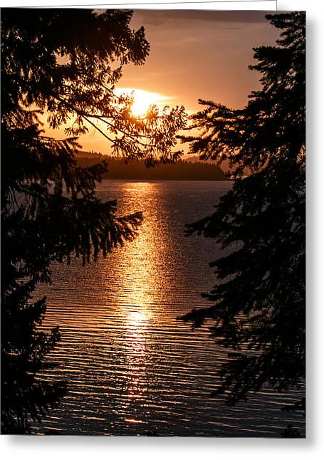 Golden Almanor Greeting Card
