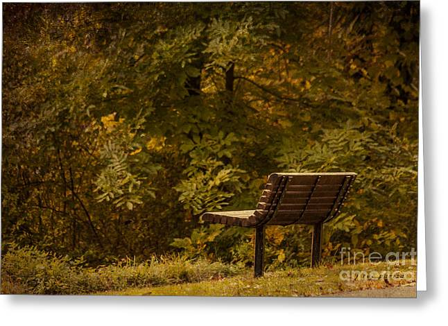 Golden Autumn Solitude Greeting Card by Janice Rae Pariza