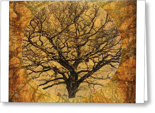 Golden Autumnal Trees Greeting Card by Lenny Carter