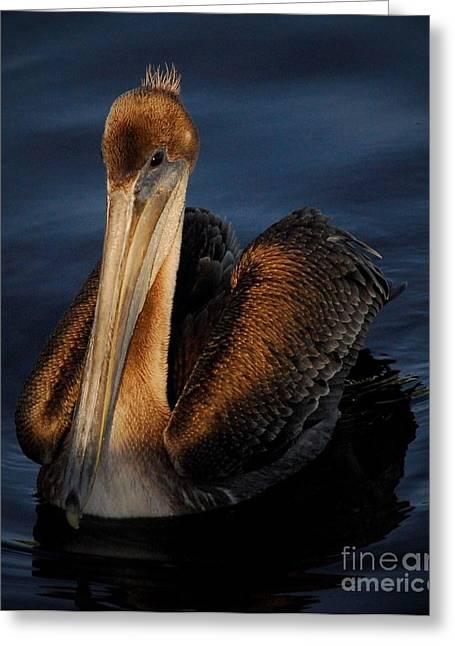 Golden Beauty Greeting Card by Quinn Sedam