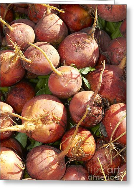 Golden Beets Greeting Card by Tony Cordoza