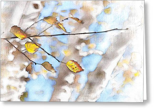 Golden Birch Greeting Card by Caitlyn  Grasso
