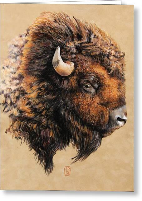 Golden Bison Greeting Card by Debra Jones