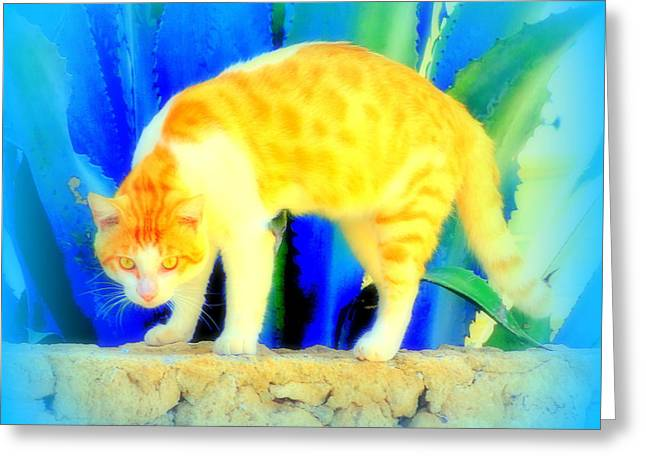 When You Are A Golden Bow Of Feline Life  Greeting Card by Hilde Widerberg