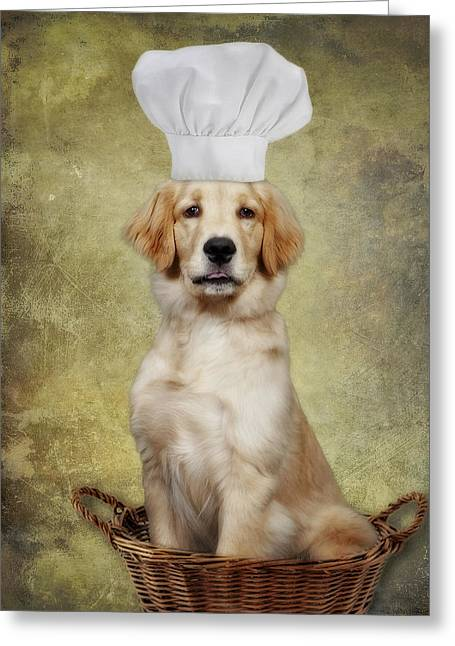 Golden Chef Greeting Card by Susan Candelario