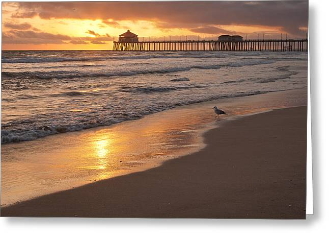 Golden Coast Greeting Card by Tuan Le