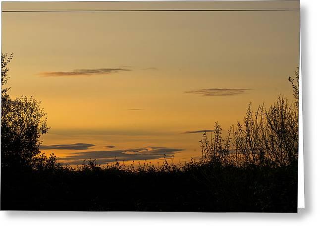 Greeting Card featuring the photograph Golden Daybreak by Liz  Alderdice