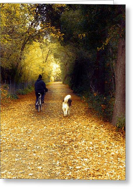 Golden Days Of Fall Greeting Card