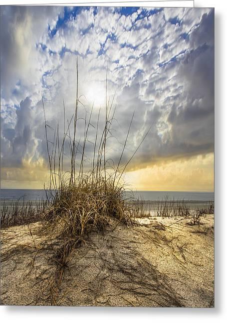 Golden Dunes Greeting Card by Debra and Dave Vanderlaan
