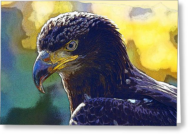 Golden Eagle Majesty Greeting Card by Amy Andreasen