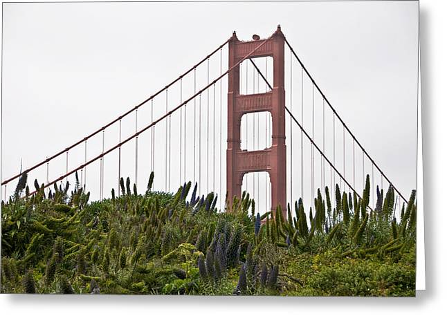 Golden Gate Bridge 1 Greeting Card