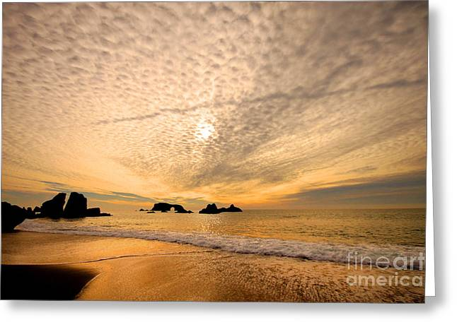 Golden Glow Of A Sunset Over Goat Rock California Greeting Card by Wernher Krutein