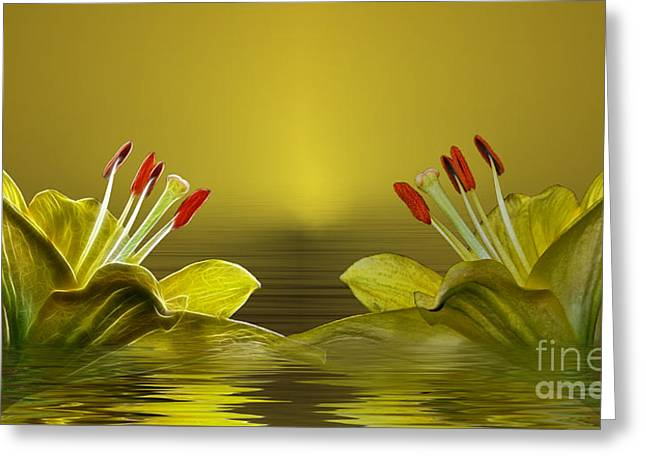 Greeting Card featuring the photograph Golden Glow by Shirley Mangini