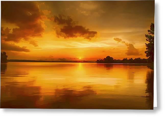 Golden Honey Sunset Greeting Card by Dan Holland