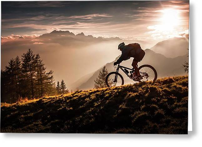 Golden Hour Biking Greeting Card by Sandi Bertoncelj