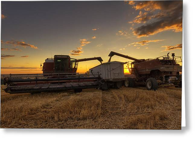 Golden Hour Grain Greeting Card