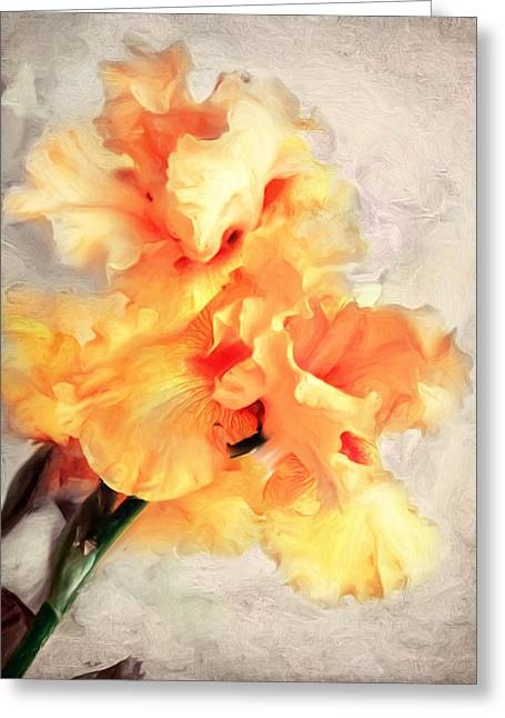 Golden Iris 1 Greeting Card