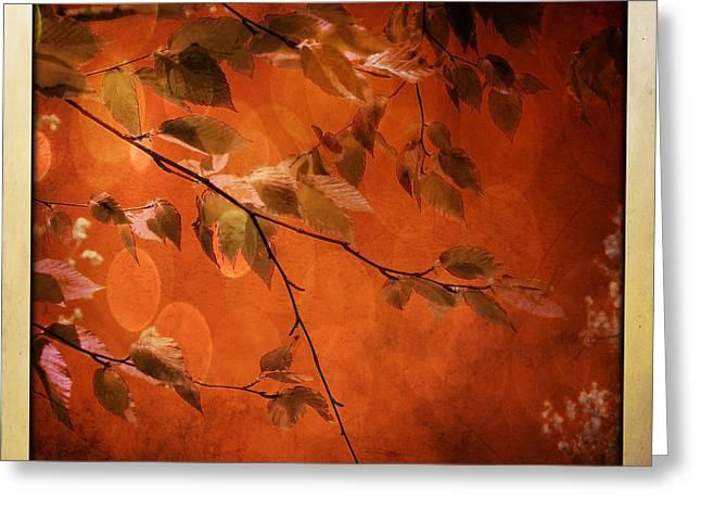 Golden Leaves-1 Greeting Card by Nina Bradica