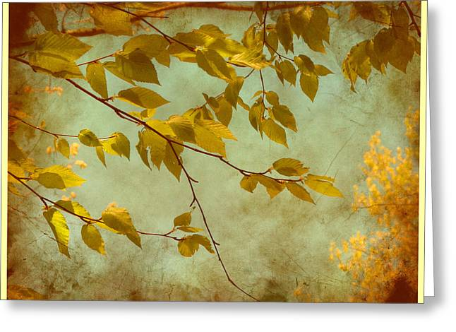Golden Leaves-2 Greeting Card by Nina Bradica