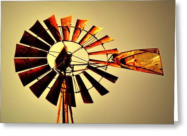 Golden Light Windmill Greeting Card by Marty Koch