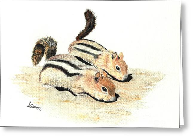Golden-mantled Ground Squirrels Greeting Card by Lynn Quinn