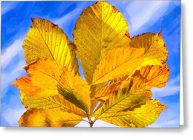 Golden Memories Of Fall Greeting Card by Mark E Tisdale