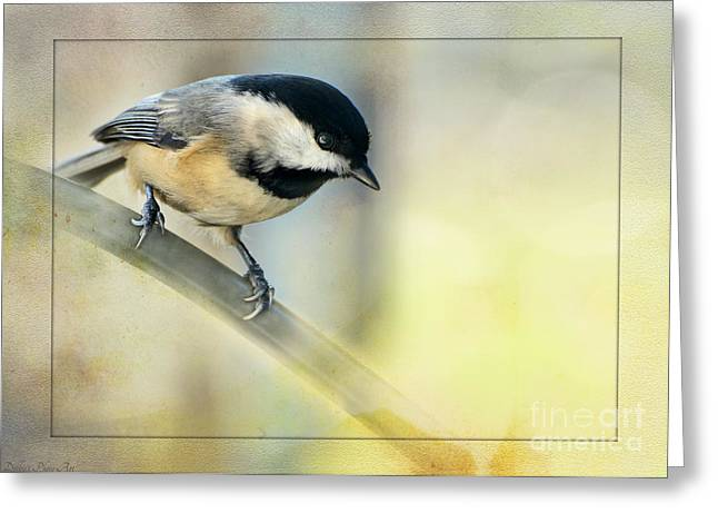 Golden Morning Chickadee Greeting Card by Debbie Portwood