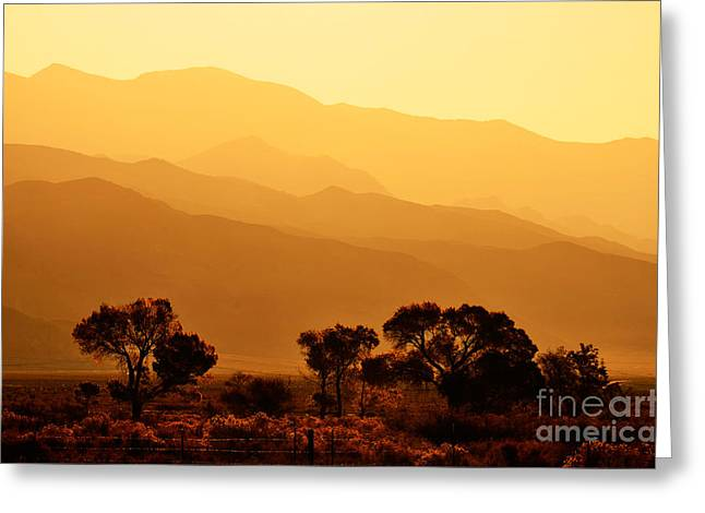 Golden Mountain Light Greeting Card