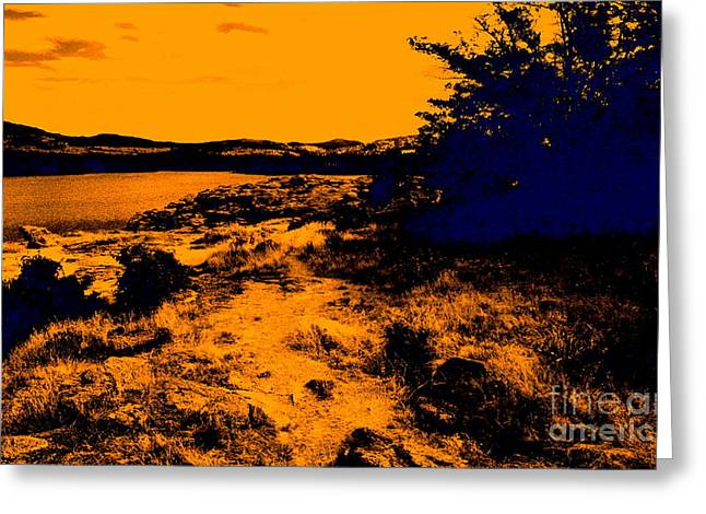 Golden Nights Greeting Card by Mickey Harkins
