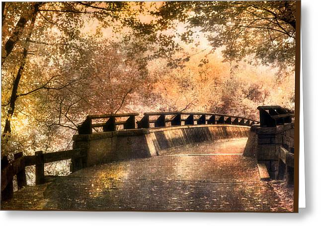 Golden Pathway - Mine Falls Park Greeting Card by Joann Vitali