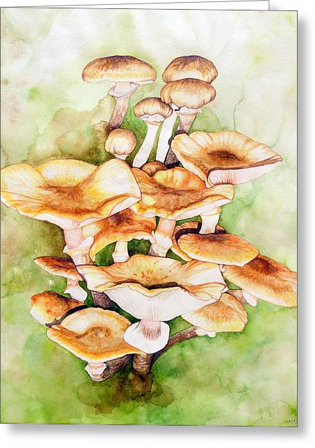 Golden Pholiota Mushroom Greeting Card by Alison Hamil
