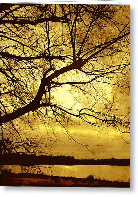 Golden Pond Greeting Card by Ann Powell