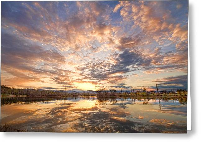 Golden Ponds Scenic Sunset Reflections 3 Greeting Card by James BO  Insogna