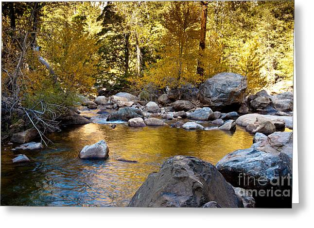 Golden Pool On Roaring River  1-7797 Greeting Card